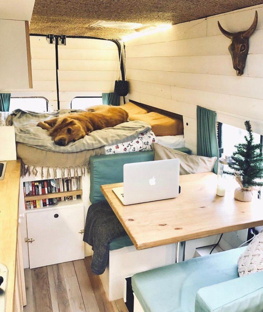 build a campervan - shed