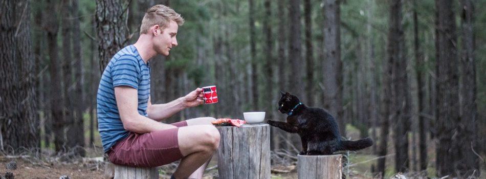 Vanlife Blogs - Van Cat Meow